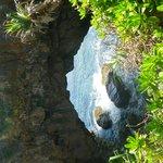 Natural Bridge Island Tour