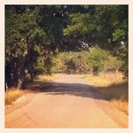 Take a walk down Luckenbach Road