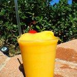 Blender Drinks poolside
