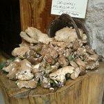 Photo de Mezza Pagnotta- cucina etnobotanica