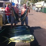 22 Mahi Mahi and one BIG SHARK!