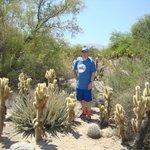Living Desert Zoo & Gardens, Palm Springs