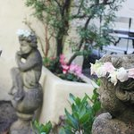 Sneak peek at our secret garden