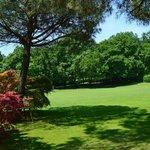 Ботанический сад неподалеку