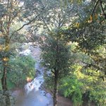 View of the  stream from the Treehouse