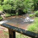 El arroyo Cuñá Pirú, que da origen al salto