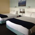 Comfortable beds in spacious room