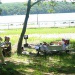 picnic area (the lake is fenced) near Tiorati Lake