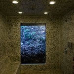 Awesome Bathroom with jungle veiw