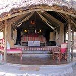 Tortilis Tent #14