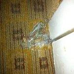 Torn carpet inside guest room