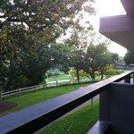Frank Lloyd Wright-inspired Balcony & Grounds