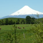 Il vulcano Osorno dallo Chalet Zapato Amarillo