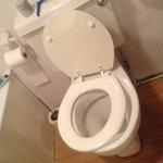 Broken toilet seat and handle