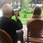 our clients enjoy sitting on the deck to photos of birds in the garden