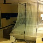 Mozzy net to protect you when sleeping.