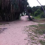 The route to the beach.