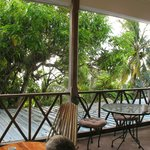 tree top balcony