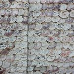 Illa da Toxa - Escritos en las conchas de vieira en la Ermita de San Sebastián