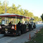 Local shuttle service by the town mayor, 1 euro to belek town, 30min cycle