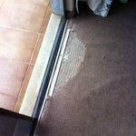 Carpete danificado e cheirando mofo