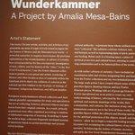 Wunderkammer by Amalia