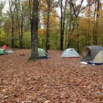 Tents assembled at Group Camp