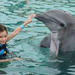 Mi niña Feliz con el delfin llamada Azteca