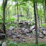 rock outcrop on Sterling Ridge