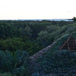 Looking west across the lagoon, rethatching almost complete, from Jabiru 303 hot tub deck.