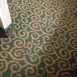 carpet's falling apart