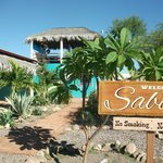 Welcome to Sabor!