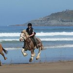 Beach rides £55 per person