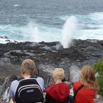 Watching the whale blow hole surf at the Galapagos