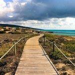 Holzweg durch Entlang der Playa Migjorn