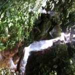 Waterfall on the Volcano