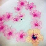 Surprise bath