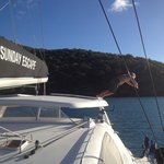 Whitsunday Escape - Day Tours