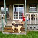 Foto de Captain's Lookout Cottages