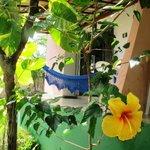 Bungalow 3 - Com um belo jardim tropical