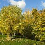 Parque le jardin d Aclimatation