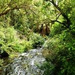 Foto de Tongariro Crossing Lodge