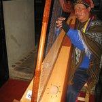 blind harpist