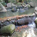 Gulbenkian Gardens