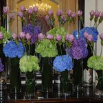 Lobby flowers at the Shelbourne.