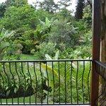 Las habitaciones tiene una vista fantástica al parque interno y al volcán
