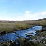 Catrigg Beck : Looking North East : March 2013