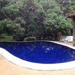 Small but beautiful pool