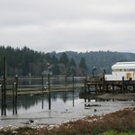 Oregon Oyster Farms, oyster beds, shed