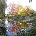 モネの睡蓮の庭
